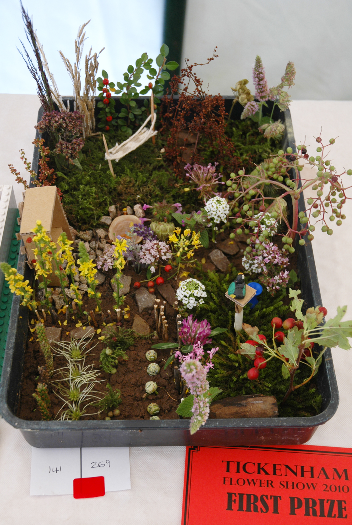 Flower show janet haigh her work for Tray garden designs