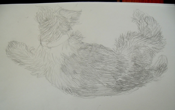 forth terrier drawing