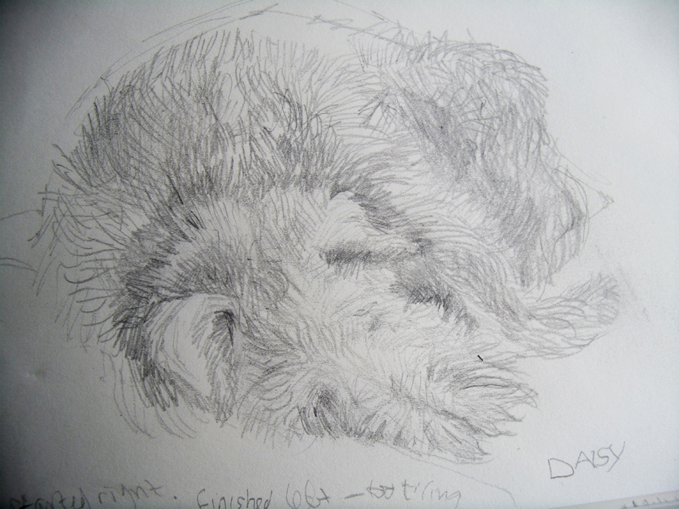 Sleeping terrier