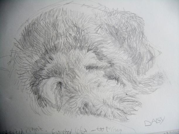 Sleeping terrier