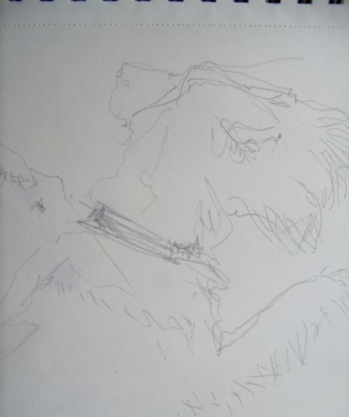 line drawing terrier head